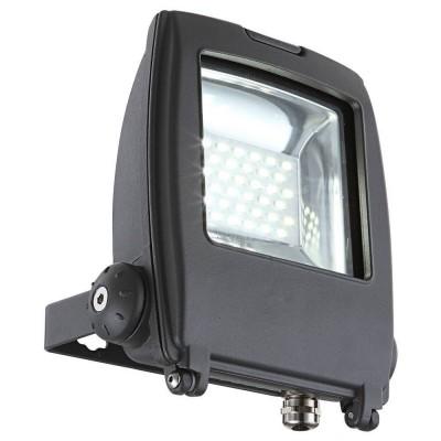 Прожектор светодиодный 34219 Globo