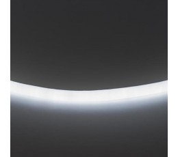 Гибкий неон 120LED/m холодный белый 50M LS720 430204 Lightstar