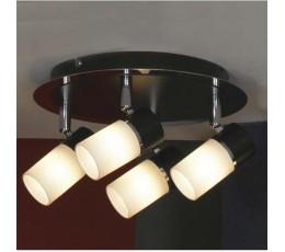 Потолочный светильник Siliqua LSQ-6101-04 Lussole