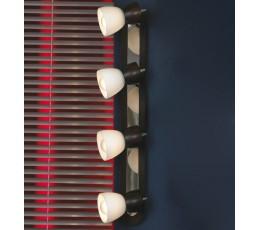 Настенно-потолочный светильник Messina LSL-8209-04 Lussole